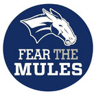 Colby Fear the Mules Button